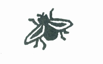 Linocut of a fly by Fiona Edge reprinted with permission.