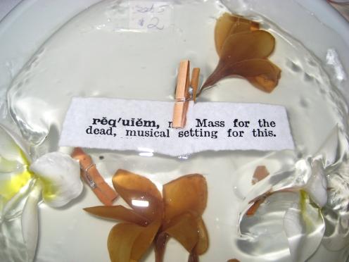 Requiem (with frangipani)